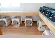 【ペットホテル】小型犬用から超大型犬用まで幅広くゲージをご用意いたしました♪