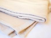 貸出品 毛布