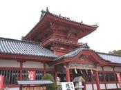 全国に三例しかない整った八幡造りの社殿。道後温泉街に立地