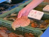 """*海鮮市場""""蒸し釜や""""/小浜で獲れた新鮮な魚貝類も蒸し釜で蒸すと最高に美味しい!"""