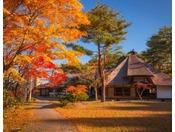 【南部曲屋】秋はきろかろ散歩しながら南部曲屋へ