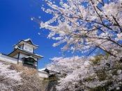 【石川門と桜】写真提供:公益社団法人石川県観光連盟