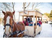 【公園めぐり馬車(冬)】凛と空気が冷たい寒い日はストーブであたたまりながら快適に公園散策