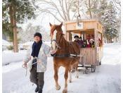 【公園めぐり馬車(冬)】日本初の薪ストーブの馬車で公園めぐり