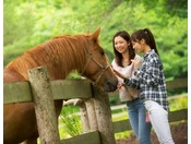 【散策】やさしくおとなしいお馬さん。