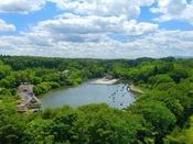 【公園】約22万坪の広大な敷地。四季折々に姿を変える公園を是非ご散策ください。