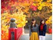 【散策】いろんな秋を探しながら広い公園を散策