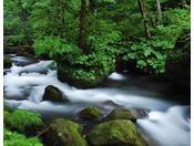 【奥入瀬渓流】奥入瀬の箱庭と言われる「石ヶ戸の瀬」