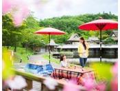 【ヨッテマレ花見まつり(春)】こたつに入りながらお花見をお楽しみください