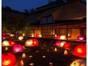 【和傘の花道(春)】春の夜、幻想的な光が誘う「和傘の花道」。夜の公園散歩へ出かけてみませんか。