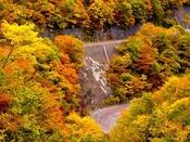 秋のドライブに最適な紅葉スポット『仙人峠』へは約92km。2016年10月31日撮影