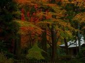 世界遺産『平泉中尊寺』へは約168km。東日本随一の平安仏教美術の宝庫と称されています。