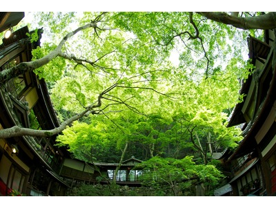 明治の森箕面 音羽山荘