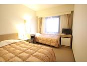 エコノミーツインお部屋は、14平米・ベッド幅110センチ1台、簡易ベッド(幅90センチ)1台。高速LAN回線・無線WiFi・地デジ対応TV・ウォシュレット完備!!禁煙のお部屋です。