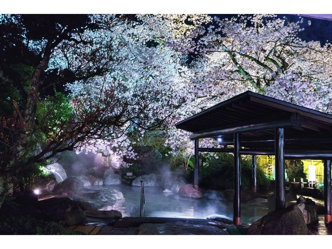 ゆめの湯 春幻想的な夜桜