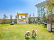 【島原半島で初めて☆有明海一望の天然芝ドッグラン!】わんちゃん遊具もたくさん♪