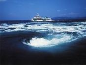 うず潮観潮船チケットがお得になるプランもあります
