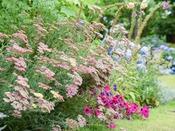 *【屋外施設(ガーデン)】四季折々の草花たちを自由にご観賞頂けます。お気軽にお立ち寄り下さい