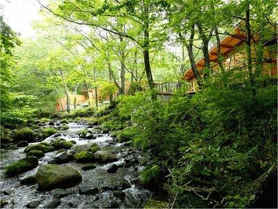 「蔵王の森」がつくる美と健康の温泉宿ゆと森倶...