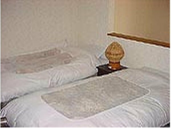 洋室部分はシングルベッドが2つあります。