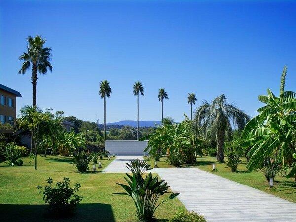 【ガーデン】正面玄関前、南国トロピカルなガーデン