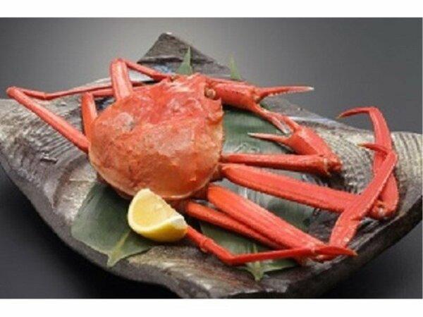 日本海産紅ズワイガニ+日本海