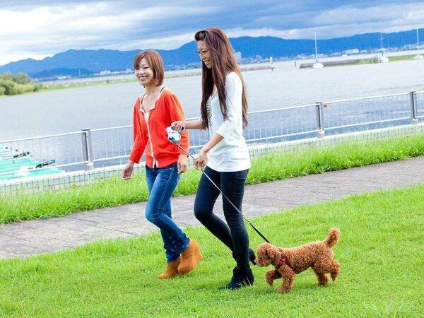 わんちゃんとお散歩☆