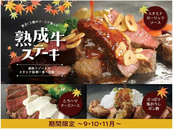 【期間限定】贅沢!3種のソースで楽しむ「熟成牛ステーキ」 ※9月~11月