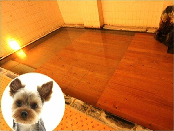 ワンちゃんたちの温泉は安全・快適な入浴を考慮した段差付き♪もちろん「湯畑源泉」100%です