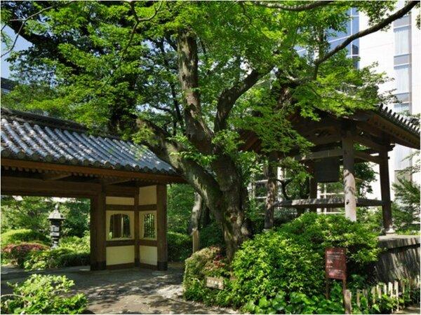 緑豊かな日本庭園