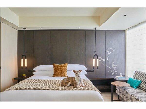 キンプトン新宿東京は大切なペットとのご宿泊も歓迎いたします。