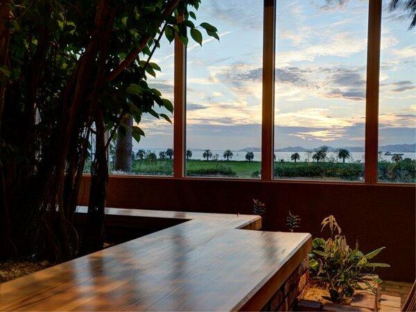 *【新館ネスト-ロビー】大きなベンジャミンの向こうに広がる夕景をゆったり楽しむ。