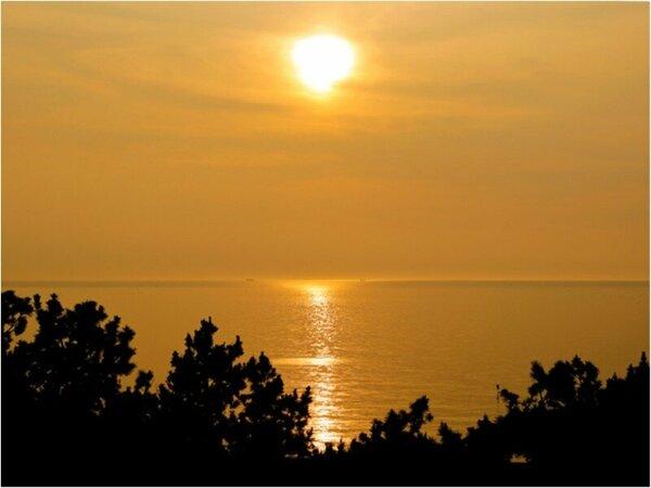 【日本の夕陽百選】名勝 慶野松原(夕日:最上階4F 松原側からの眺望)