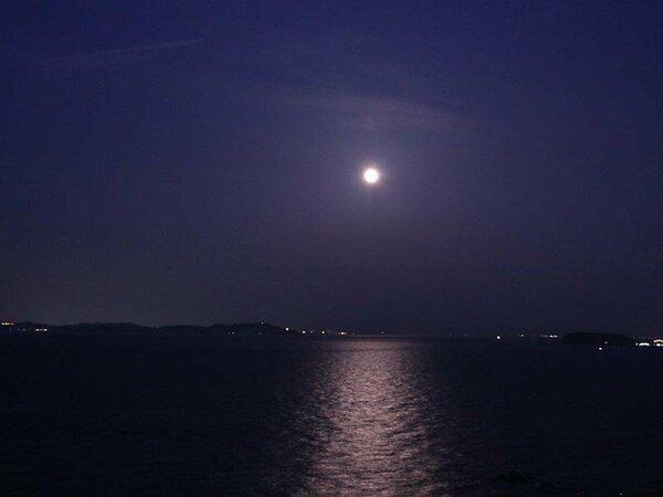 キラキラ光る「月の道」