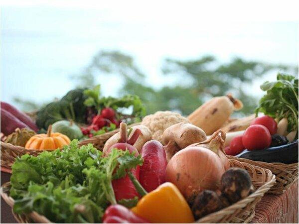 """淡路の自然が育んだ旬の野菜が織り成す""""食""""のハーモニー"""