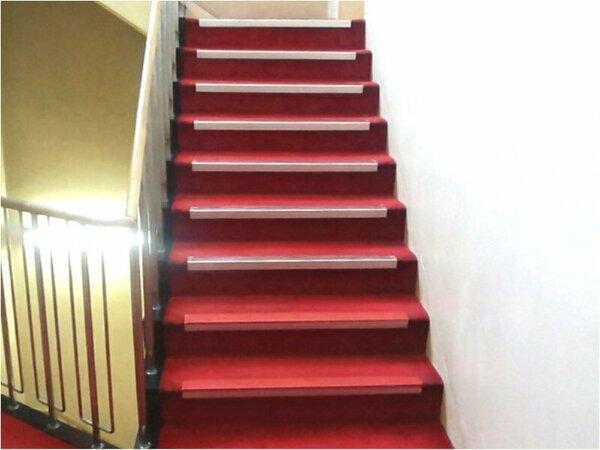 階段9段有り これが不便ですネ