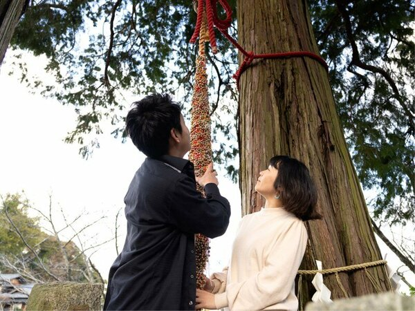 【武雄神社】「大楠」と「夫婦杉」は、開運&良縁結びをお祈り