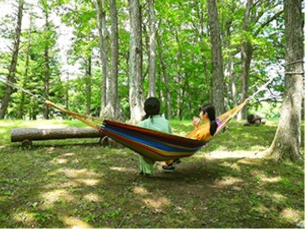 風に吹かれながらブナやコナラの森でうたたねやゆったり読書はいかがでしょう。連泊ならお昼寝もおすすめで