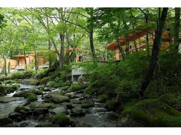 自由で快適なオールインクルーシブ。森に佇む大人の森林温泉リゾートで静かな時間を。