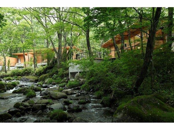 滞在は自由で快適なオールインクルーシブ。森に佇む大人の森林温泉リゾートで静かな時間をお過ごしください