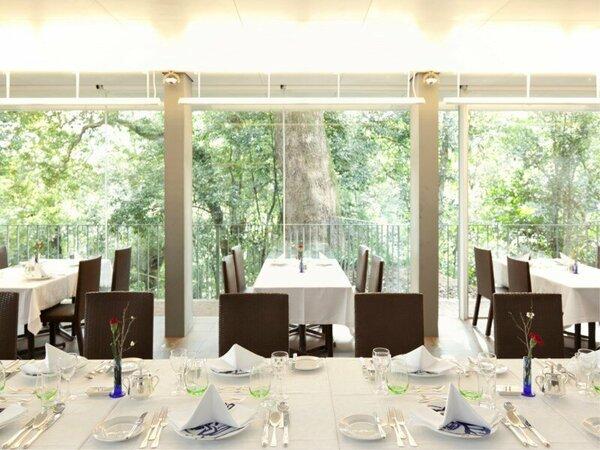 【カフェ&レストラン 神椿】森の中に佇むレストラン