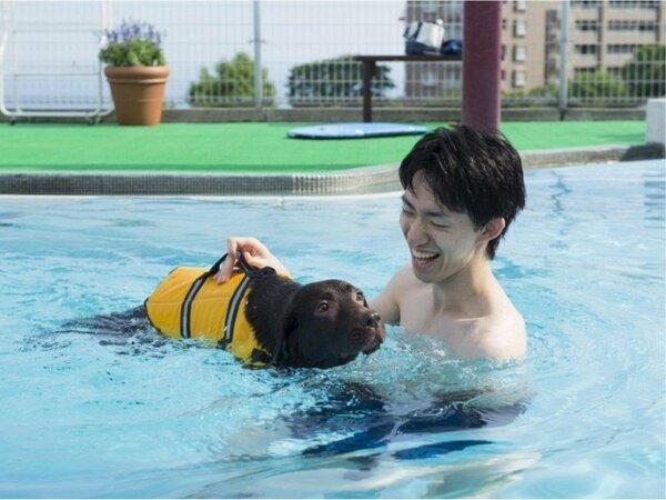 【プール】わんちゃん専用温水プール!愛犬と水遊び♪
