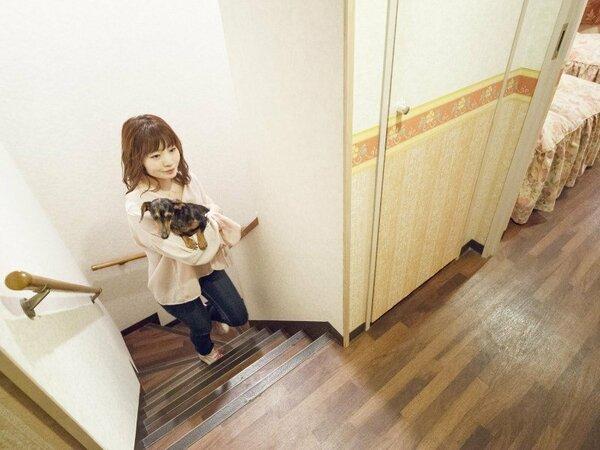 【メゾネット】室内に急勾配の階段があるお部屋です。足腰の悪いわんちゃんはおすすめしておりません。
