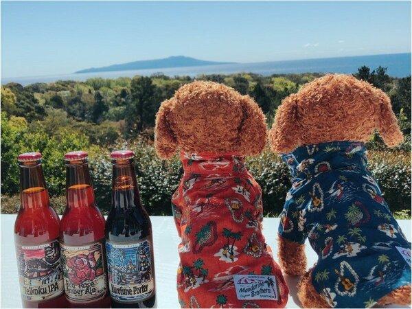 アロハとクラフトビール