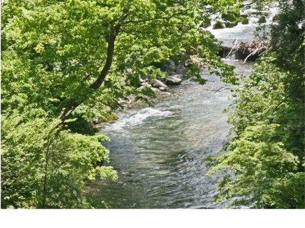 温泉街を流れる佐梨川
