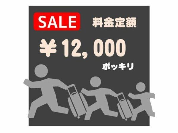12000円ポッキリ!