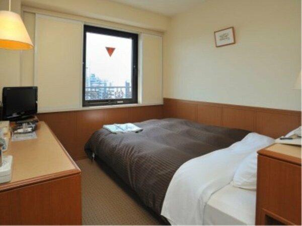 【部屋】エコノミーダブルルーム(ベッド幅140cm)13平方メートル