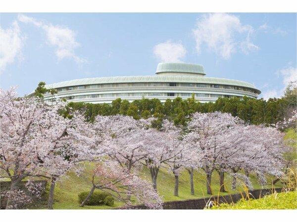 グランドプリンスホテル京都周辺の桜