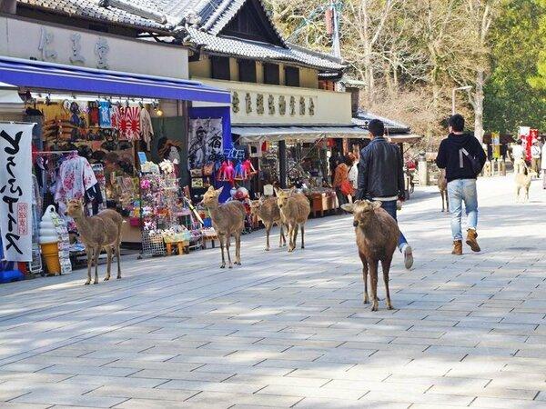 【当館周辺】東大寺前の道にて。。お土産物のお店など賑っております♪