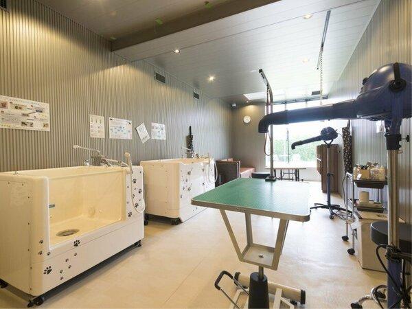 トリミングルームには本格的な設備が整っております。